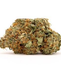 42-DEGREES-FARMS-HAWAIIAN-HAZE-CBD-HEMP-FLOWER